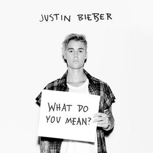 What Do You Mean? Album