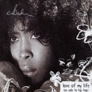 Love of My Life (An Ode to Hip-Hop) Album
