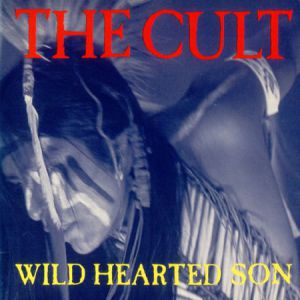 Wild Hearted Son Album
